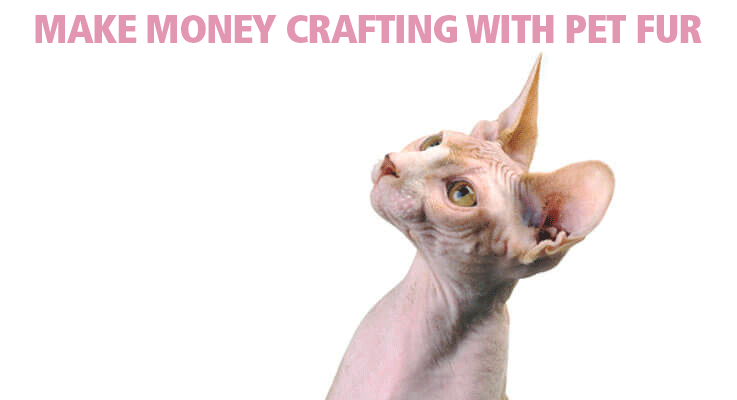 Crafting with cat hair could make you some extra money