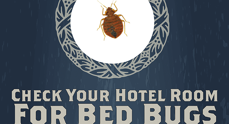 Do you know how to check your hotel for bed bugs