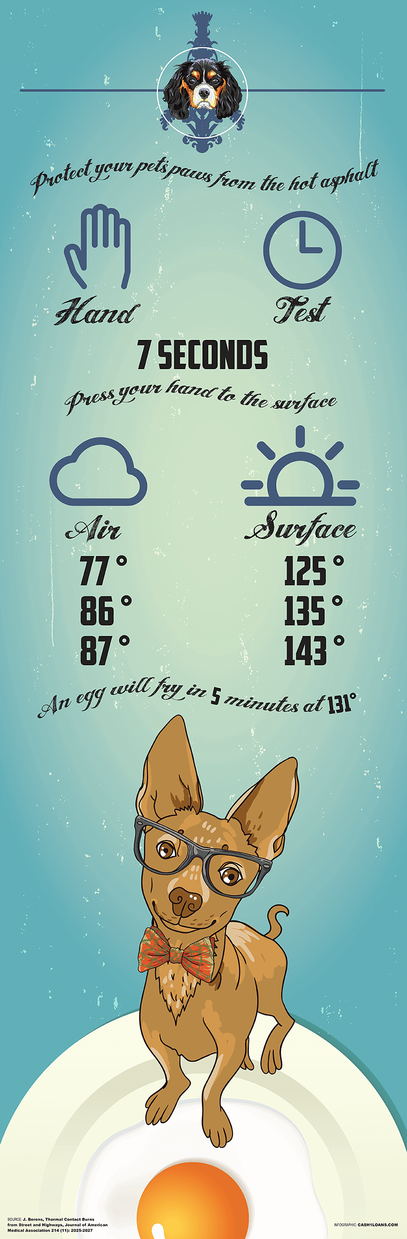 How to keep your pets safe this Summer infographic